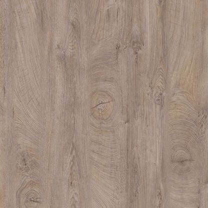 Kantlist ABS Raw Endgrain Oak K105 PW